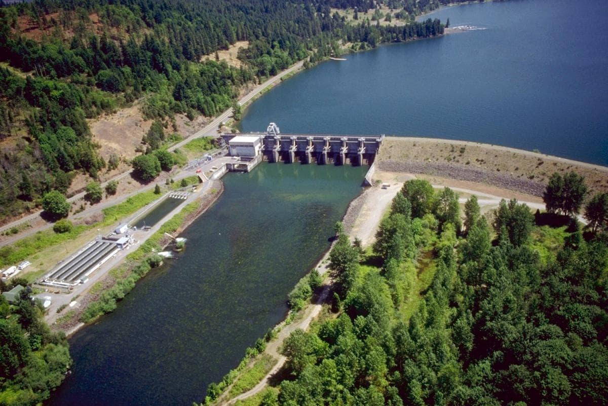 مهندسی رودخانه